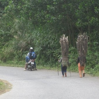 Highland Roads: KonTum- Ban Me Thuot- Lak Lake- Da Lat, 85USD/person/day
